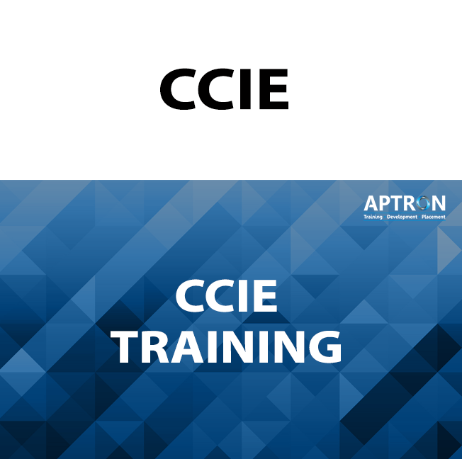 CCIE training in noida